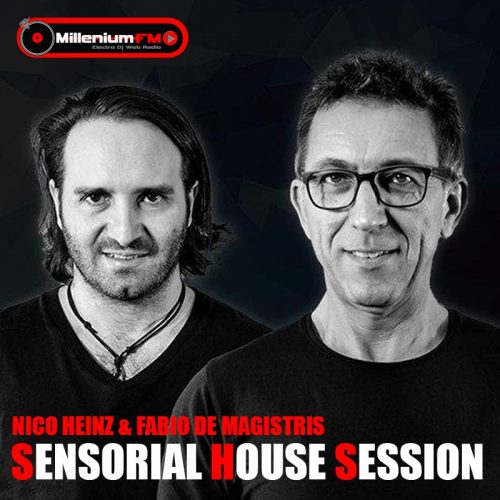 NICO HEINZ & FABIO DE MAGISTRIS-SENSORIAL HOUSE SECTION